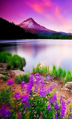 Science Discover Pretty colours in the sky in this scenic shot of a mountain lake. Beautiful World Beautiful Places Amazing Places Beautiful Scenery Beautiful Sunset Beautiful Nature Photos Beautiful Monday Beautiful Morning Amazing Things Beautiful World, Beautiful Places, Amazing Places, Beautiful Scenery, Beautiful Sunset, Beautiful Monday, Beautiful Photos Of Nature, Beautiful Morning, Amazing Things