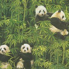 AS Creation Panda Pattern Wallpaper Bamboo Forest Embossed Vinyl 336351 - Green Wallpaper Paste, Wall Wallpaper, Pattern Wallpaper, Bear Wallpaper, Kids Bedroom Wallpaper, Latest Cartoons, Modern Wallpaper Designs, Decorative Pebbles, Panda Wallpapers