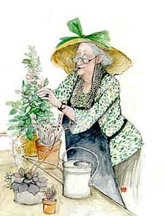 sue macartney snape images - Google Search