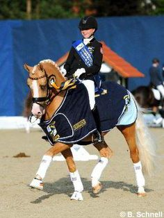 My goal for Miss. L- to be #winner of FEI dressage ponies and to win a big honking cooler.