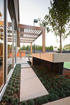 Garrell Street - COS Design contemporary landscape Mondo grass & stepping stones