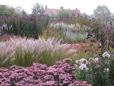 Pensthorpe Millennium Garden 09/10 - 05