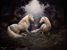 63 Best Myths & Ledgends images in 2016 | Mythical creatures