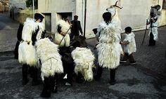 Carnevale di Ula Tirso:S'Urtzu e Sos Bardianos .  Si tratta del classico rapporto uomo-bestia,  S'Urtzu, figura presente anche altrove, è rappresentato da un uomo che indossa la pelle di un cinghiale, un campanaccio e un pezzo di sughero sulla schiena. L'animale viene percosso da sos Bardianos, uomini con il viso e il vestito di colore nero, dotati di un bastone con cui colpiscono s'Urtzu.