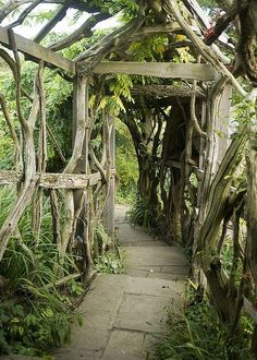 Witch Garden:    ~ Living tunnel in Furzey Gardens, Hampshire, England (by Steve Franklin).