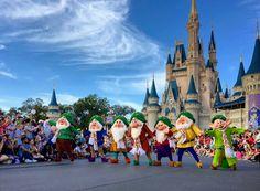 Disney World Christmas Party, Christmas Travel, Christmas Trips, Disney World Resorts, Walt Disney World, Cinderella Castle, Seven Dwarfs, Bellisima, Special Events