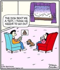 Funny Animal Comics, Dog Comics, Animal Memes, Funny Comics, Funny Animals, Animal Funnies, Animal Quotes, Cartoon Dog, Cartoon Pics