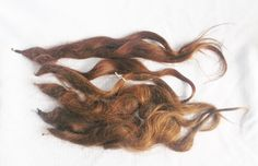 Antique Victorian 1880s Lot of Seven Hair Pieces Hair Switches Real Human Hair
