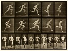 "Photographed by Eadweard Muybridge. Photographic sequence of a human male from the front and side, swinging a bat at a baseball. One of many studies by Eadweard Muybridge from his seminal work ""Animal Locomotion"" created in Human Reference, Animation Reference, Anatomy Reference, Photo Reference, Male Figure Drawing, Figure Drawing Reference, Eadweard Muybridge, Anatomy Poses, Work With Animals"