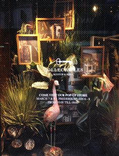 Scotch Collectables window at Scotch & Soda store Heiligeweg in Amsterdam
