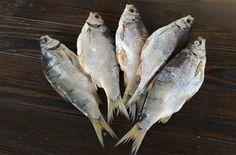 Вяленая рыба - технология засолки и вяленья в домашних условиях по пошаговым рецептам с фото