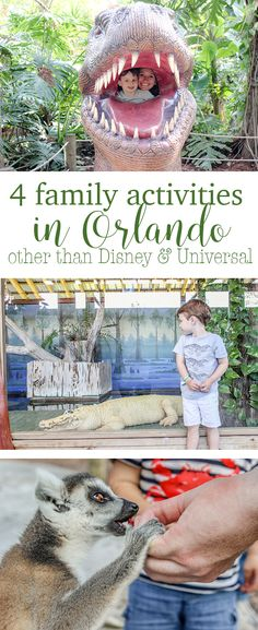There are so many family activities in Orlando that you don't even need to go to the major theme parks to entertain the family  4 Family Activities in Orlando that aren't Disney or Universal http://eatdrinkandsavemoney.com/2017/03/20/4-family-activities-in-orlando-that-arent-disney-or-universal/