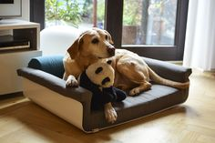 Interior design for pets – Hanna playing around with her little panda bear on our Pullmann dogbed.