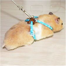 Hamster Squirrel Lead Leash Pet Rat Mouse Harness Rope Band Bell Nylon Full