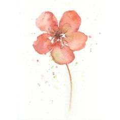 Flower, flower art print, Watercolor art print, watercolor, Lenten... ($18) ❤ liked on Polyvore