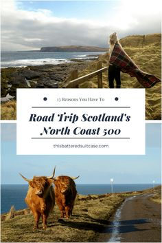 From mountains to beaches to Highland cows, Scotland's North Coast 500 has it all. Here's why you should consider making a road trip around the North Coast 500 your next adventure.