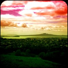 View of Rangitoto Island from Cornwall Park (One Tree Hill) Auckland NZ.