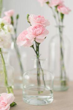Shade Garden Flowers And Decor Ideas Pink Wedding Carnations Confetti. Carnation Centerpieces, Wedding Table Centerpieces, Wedding Flower Arrangements, Wedding Decorations, Pink Centerpieces, Quinceanera Centerpieces, Floral Wedding, Diy Wedding, Wedding Flowers