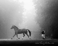 this pic stopped my heart - that looks so much like my horse
