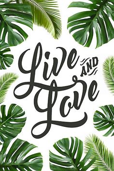 Live and Love // Inspirational Poster and Gifts Photographic Print by hocapontas - Real Time - Diet, Exercise, Fitness, Finance You for Healthy articles ideas Plant Wallpaper, Tropical Wallpaper, Cute Wallpapers, Wallpaper Backgrounds, Iphone Wallpaper, Plant Painting, Plant Art, Tropical Art, Tropical Leaves