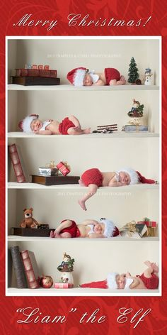 Baby Elf on the Shelf. Someone NEEDS to do this. Cutest Christmas card ever!!!