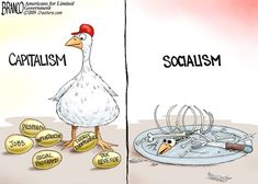 This is a story about capitalism's Golden Goose and what socialism will do to it if they ever get total control. a parasite that eventually eats the host. Political Cartoon by A. Branco More A. Crush Memes, Political Quotes, Political Satire, Republican Quotes, Funny Political Cartoons, Political Views, Funny Comics, American History Lessons, Native American History