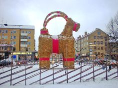 Gavle christmas billy goat