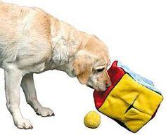 Výsledek obrázku pro výroba chytrých hraček pro psy