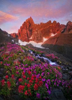 """Where Dreams Began"" by landscape photographer Marc Adamus.  Wildflowers bloom in a meadow in Oregon's high Cascades."