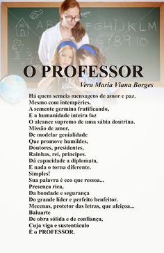 Vera Maria Viana Borges: O PROFESSOR