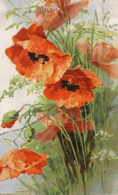Poppies  Cross stitch pattern pdf format by diana70 on Etsy