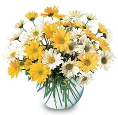Columbus, Ohio flower delivery made easy with Giffin's Floral Designs. Our floral arrangements are unique flower designs created with artistic flowers flare, and then hand-delivered to your loved one's door. Sunflower Wedding Arrangements, Floral Arrangements, Wedding Flowers, Daisy Wedding, Dream Wedding, Chrysanthemum, Get Well Soon Flowers, Yellow Bridal Showers, Send Flowers Online