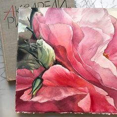 Watercolorist: @sasha_andreeva #waterblog #акварель #aquarelle #drawing #art #artist #artwork #painting #illustration #watercolor #aquarela