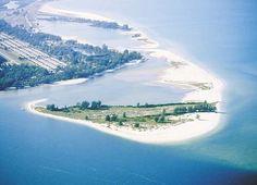 Fort DeSoto Park's pristine dog-friendly beach