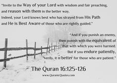 """The Quran (Surah an-Nahl):- """"Invite to the Way of your Lord with wisdom and fair preaching, and reason with them in the better way. Quran Verses, Quran Quotes, Religious Quotes, Islamic Quotes, Arabic Quotes, Quran In English, War Quotes, Noble Quran, Daily Wisdom"""