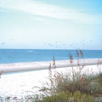 68 Free and Cheap Things to Do in Gulf Shores,AL | TripBuzz