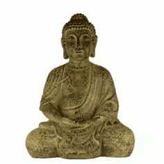 Buda Büyük Biblo