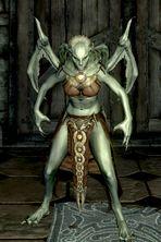 sorta how her true vampire form looks like (wears battle gear in true form) Elder Scrolls Lore, Elder Scrolls Skyrim, Blood Magic Spells, Skyrim Vampire, White Aura, Female Vampire, Twin Souls, Auras, Werewolf
