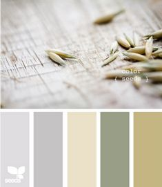 Great earth tone color palette!