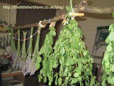 Herb Drying Rack - Reincarnated