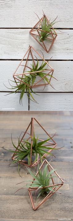 DIY Copper Plant Hangers www.LiaGriffith.com #MakeItFunCrafts