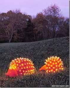 porecupine pumpkin Again Martha Stewart comes through with a winner!