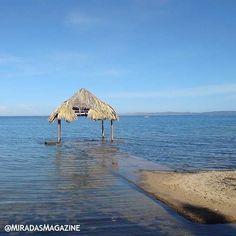 #Destinos\ Playa Maigualida es una playa ubicada en el oriente de Venezuela en el estado Sucre en la población de Marigüitar. En esta playa se encuentra un hotel con el mismo nombre que es visitado nacionalmente y también van personas del extranjero atraídos por su atardecer y sus playas. . . #MiradasMagazine #Destinos#Miradas #RevistaMiradas #MiradasDigital #Mercadeo #PetroMoneda #Petro #Arte #Tecnologia #Turismo #DestinoTuristico #MiradaFotografica #Mochima #Anzoategui #Anz #Lecheria.