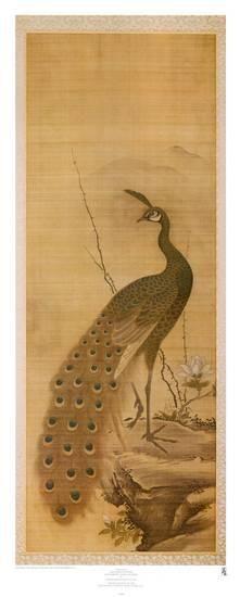 Peacock Art Print by Yanagisawa Kien at Art.com