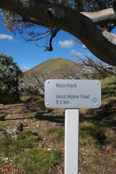 Razorback, Australian high country. Trail Signs, Country, Rural Area, Country Music