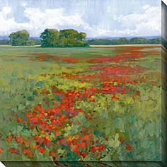Gallery Direct Kim Coulter 'Red Poppies I' Giclee Canvas Art - Free Shipping Today - Overstock.com - 11954254 - Mobile