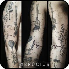 Botanical illustration tattoo by Brucius – floral tattoo sleeve Botanisches Tattoo, Woodcut Tattoo, Body Art Tattoos, New Tattoos, Sleeve Tattoos, Scientific Tattoo, Vegetable Tattoo, Culinary Tattoos, Natur Tattoos