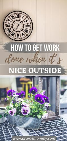 It's pretty tough sometimes to keep the momentum of working up when all you want to do is enjoy the nice summer weather. Here's some tips to help you get work done - even when it's nice outside. #summer #workfromhome #selfemployed #productivity Make Money From Home, How To Make Money, How To Get, Pretty Tough, Productivity, The Outsiders, Weather, Nice, Plants