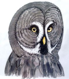Copic Marker Art Copic Marker Art, Copic Art, Copic Markers, Drawing Sketches, Drawings, Owl, Doodles, Bird, Instagram