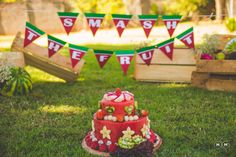 Picnic for babys, smash the fruit, smash the fruit scene, baby photography decoration.